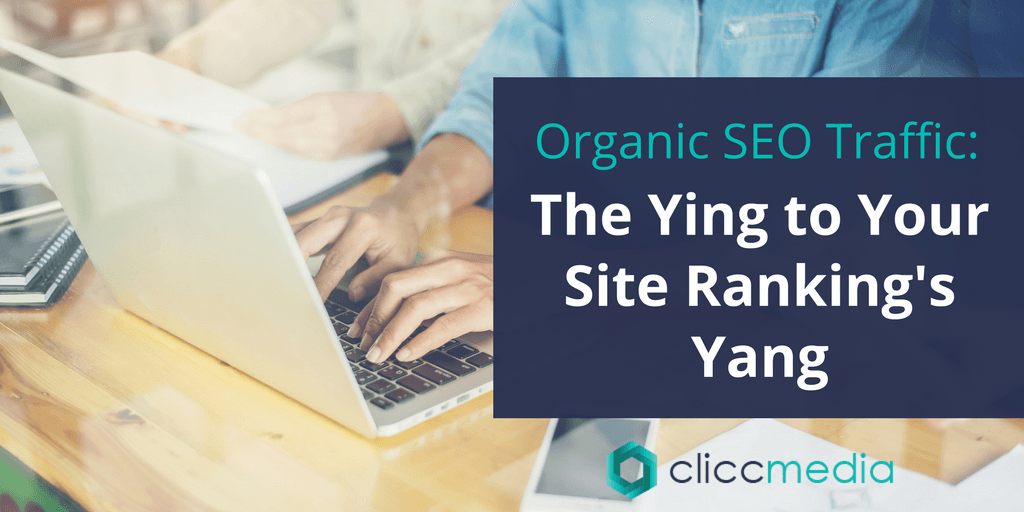 organic seo traffic