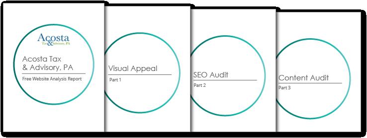 website analysis report sample